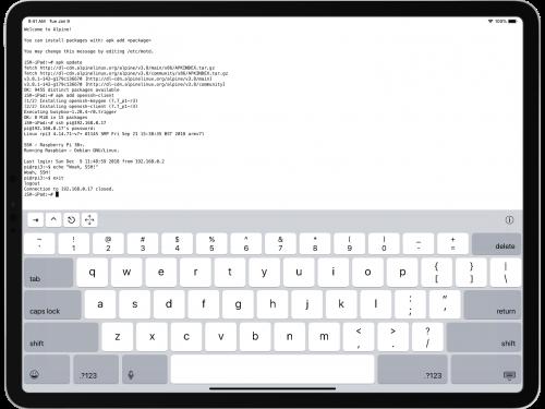 iSH, l'app che porta Linux su iPad e iPhone